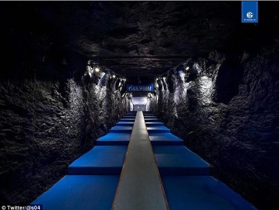 Schalke Player Tunnel